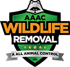 Madison Animal Removal